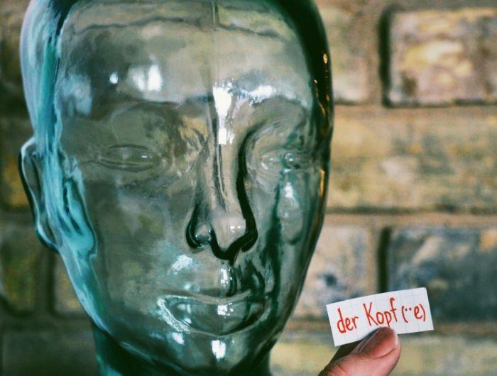 der Kopf - the head