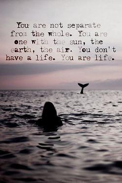 I am life and life is me. www.liberatingdivineconsciousness.com