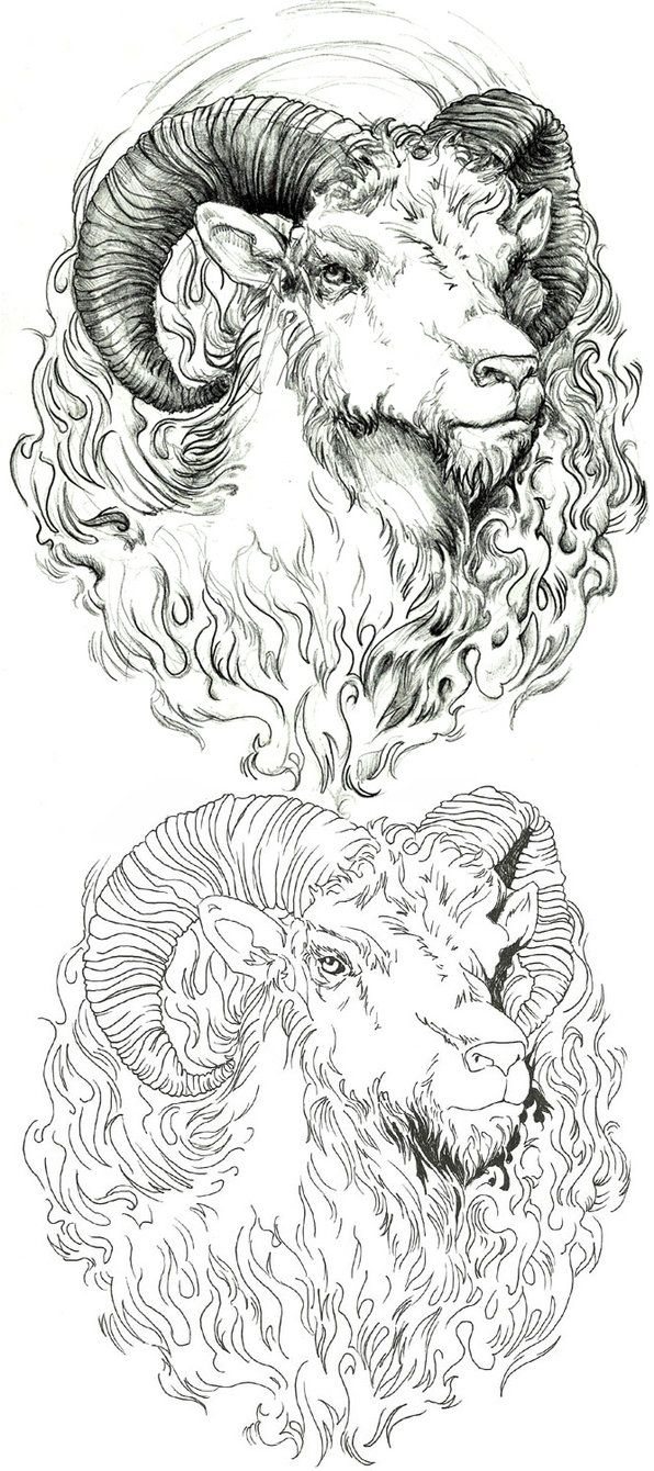 aries tattoo design by endofnonentity on DeviantArt