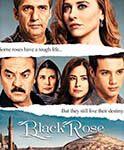 Ver Todos los Capítulos de Rosa Negra Completamente Gratis.