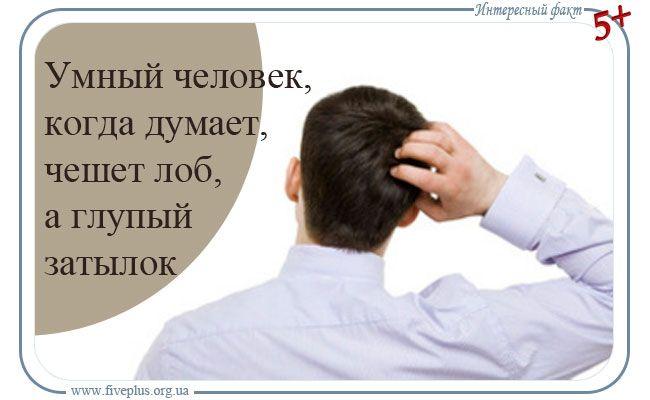Почему умные люди, когда думают, чешут лоб, а глупые затылок?