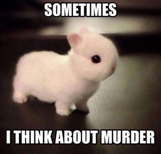 Hahahah...soo cuteee tho!