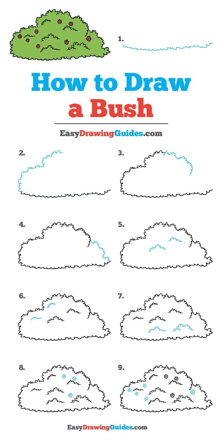 Learn How To Draw A Bush Easy Step By Step Drawing Tutorial For Kids And Beginners Bush Drawingtutoria Drawing Tutorial Easy Easy Drawings Drawing Tutorial