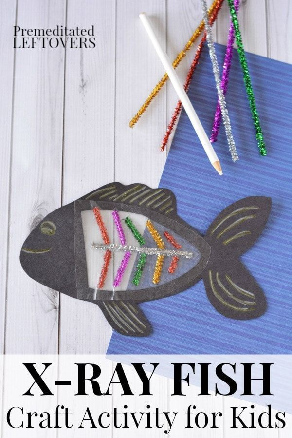 This X Ray Fish Craft Is A Fun Way To Teach Kids About X Rays