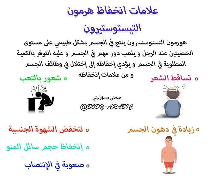 Pin On Www Body Arabic Com