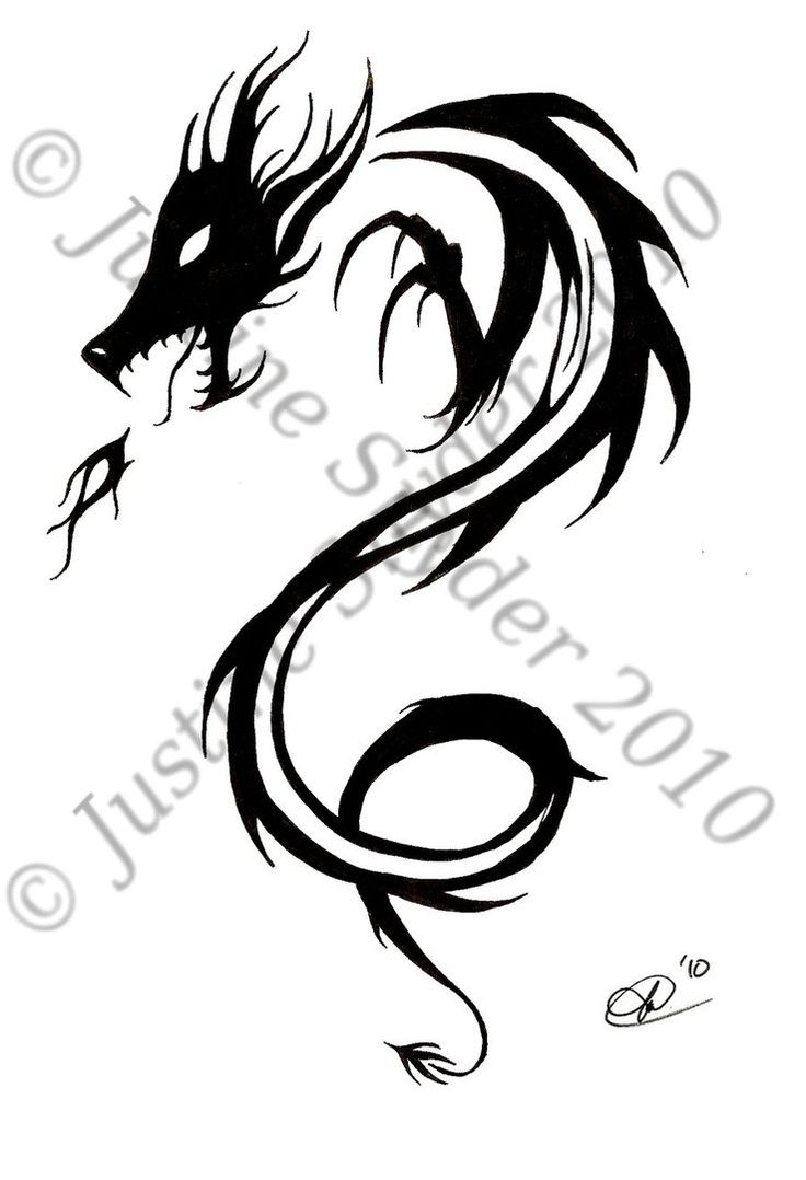 simple celtic dragon design tribal dragon design by