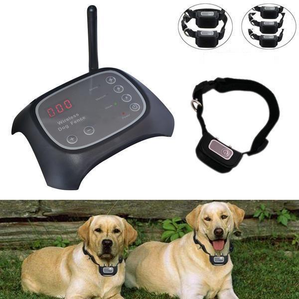 Wireless Dog Fence With Collar Thetrendclub Dog Fence Dog