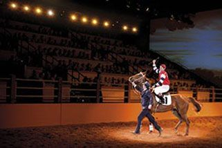 Australian Outback Spectacular - Tues, Wed and Fri - Adult, Gold Coast QLD | RedBalloon