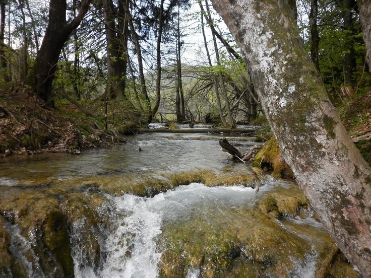 Los lagos de Plitvice nos dejaron maravillados... Naturaleza en estado puro