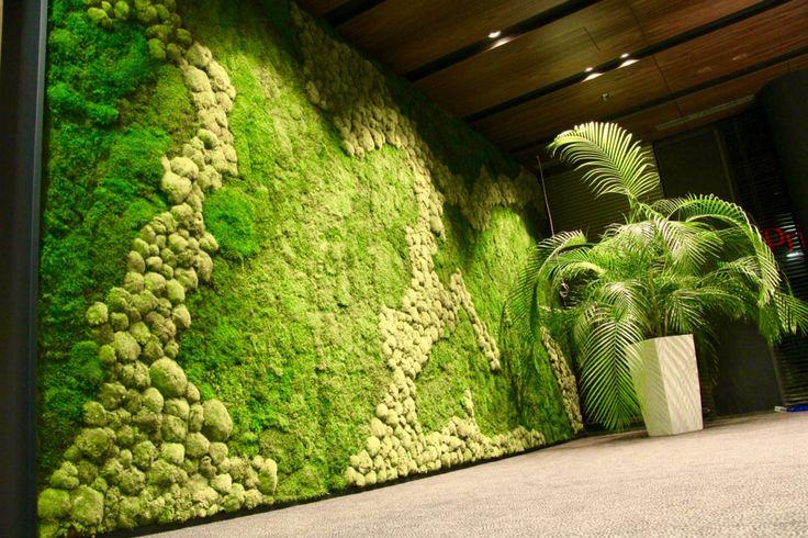 Výrazná machová stena