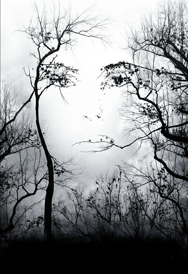 Her face in the trees