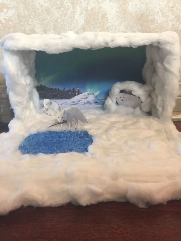 Arctic wolf diorama - photo#19
