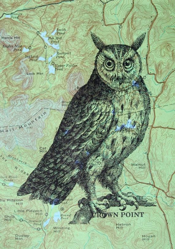 Owl Print on Map of Adirondack Region | Maps | Pinterest