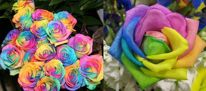 these are real! you can get them from flower shops in the UK