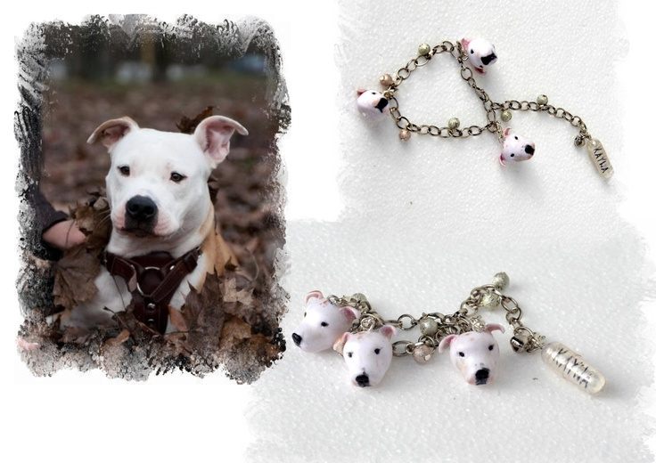 ...bracelet with a name of the dog in the pill...