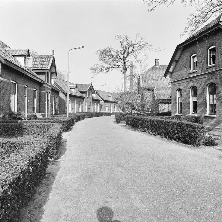 Agnetapark, arbeiderskolonie met in kleine blokjes gegroepeerde woningen, elk voorzien van eigen door heggen begrensde tuintjes. Omvat slingerend stratenpatroon, landschappelijk aangelegd park, arbeiderswoningen, drukkerij, gemeenschapshuis in Delft | Monument - Rijksmonumenten.nl