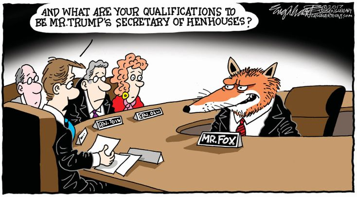How Trump chose his Cabinet.