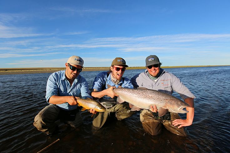7 best fishing spots images on pinterest fishing brown for Santa cruz fishing spots
