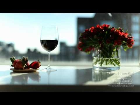 VIDEO: Harvard Square Hotel, Cambridge, MA. DiscoverHarvardSquare.com