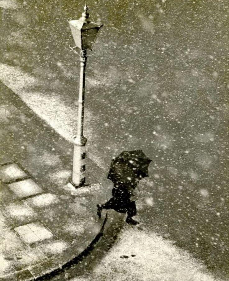 Abbott, B. Vincent   London   Presumably 1940's: Vincent Of Onofrio, Abbott, London Presum, Presum 1940S, Black And White, Vincent London, Posts, Presum 1940 S, Photography