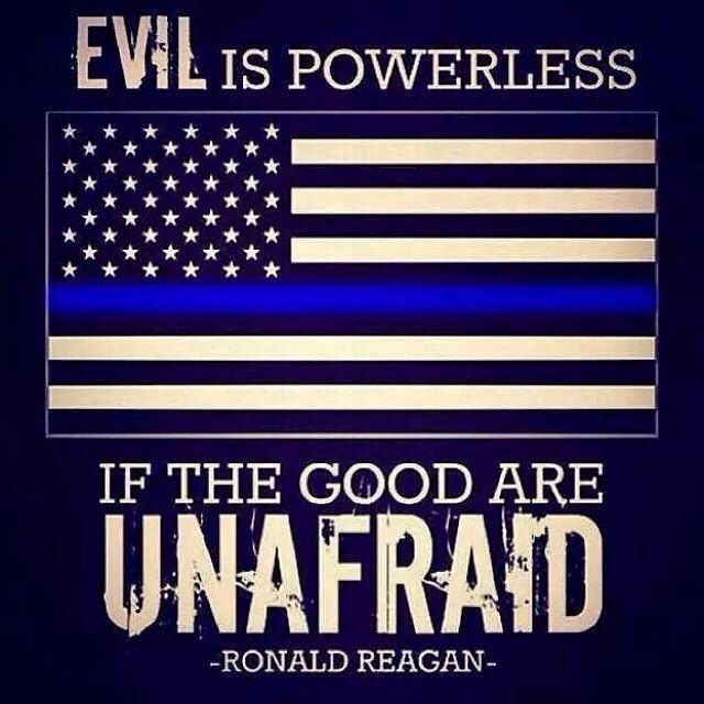 So many LEO have been killed in the line of duty these last few weeks...Too many...God Bless them ALL