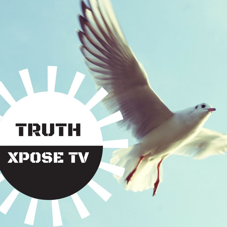 If you are feeling stuck and not getting the results you want in life, you will gain great insights from my interview with Gold Coast success coach Robyn Woodford on Truth Xpose TV soon. You can join us free here: https://www.youtube.com/watch?v=QDHn6_TLpw4