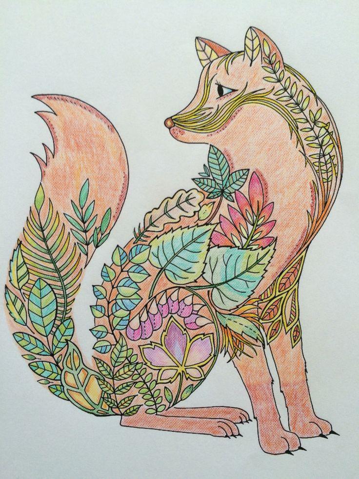 Fox - Johanna Basford - Enchanted Forest - Floresta Encantada
