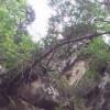Narlıdere köyü alabalık macerası 12 Mayıs 2013 | Avlarimiz.in - Tükiyenin En Kaliteli Avcı Sitesi