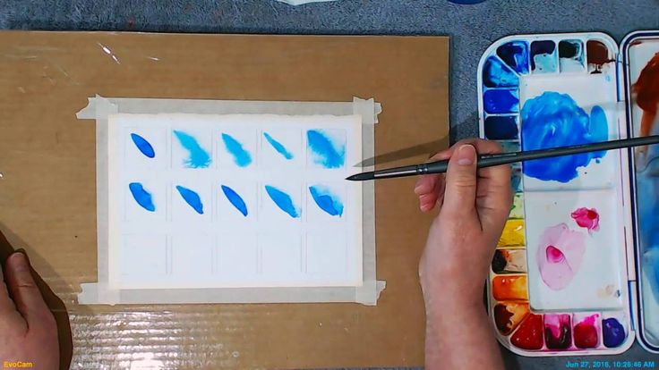 Watercolor Basics—Achieving Soft Edges Beginning