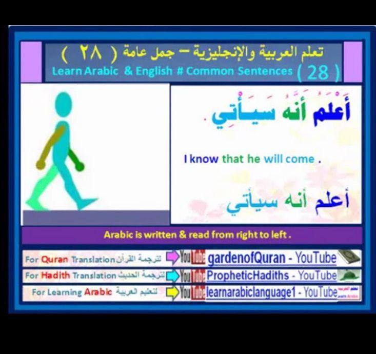 Learning Arabic Msa Fabiennem Arabic Sentences Learning Arabic Quran Translation