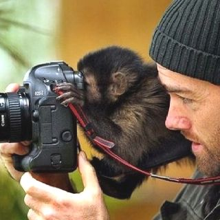 Clever baby monkey #professional #photographer