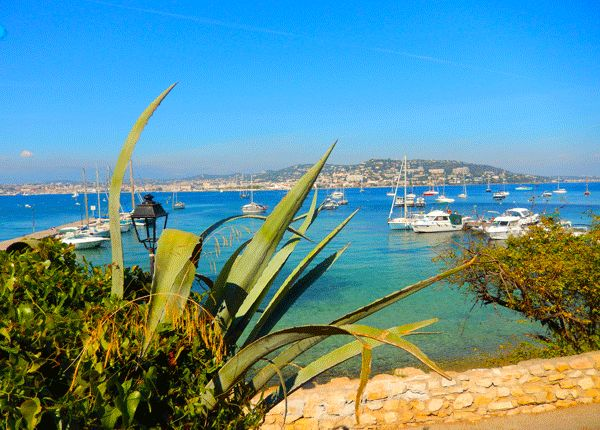 Ile Sainte Marguerite Cannes : The Good Life France