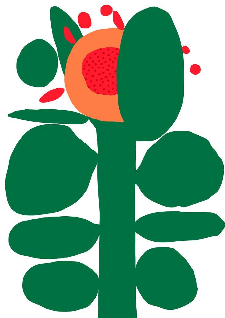 Antti Kalevi, Orange Flower, 2015