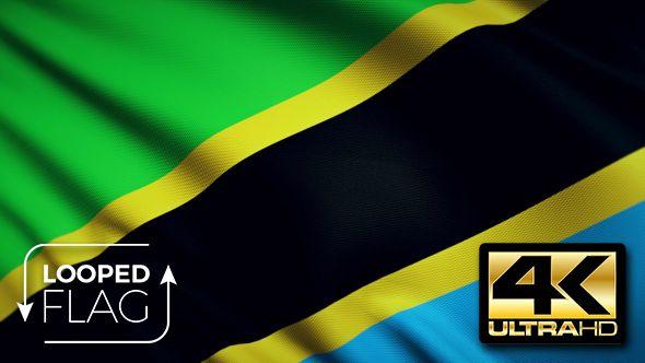 Tanzania Flag 4K