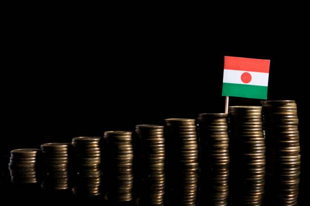 niger flag with lot of coins isolated on black background
