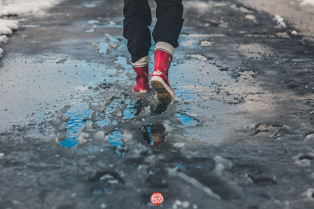 087/365 Spring Puddles by Jussi Hellsten #Photography, via Flickr