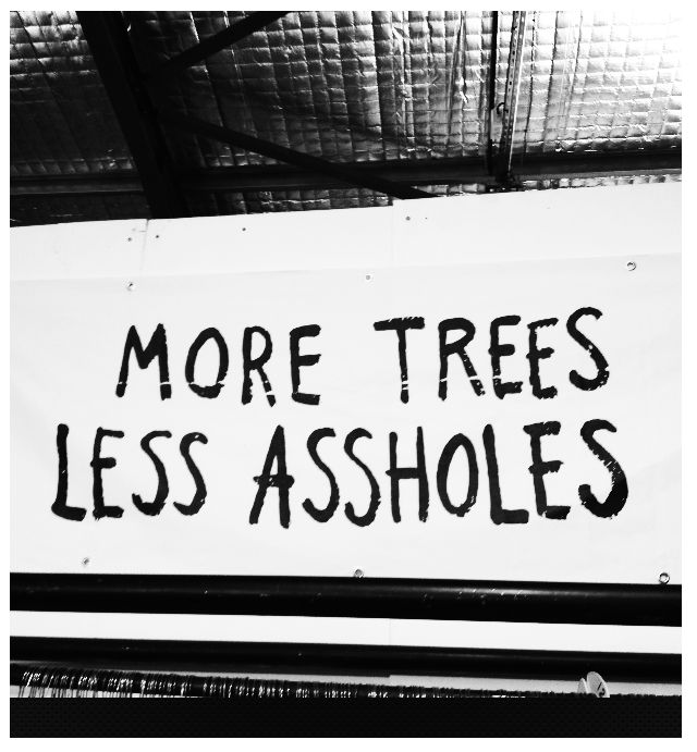 More trees less assholes   © Eve Lingen