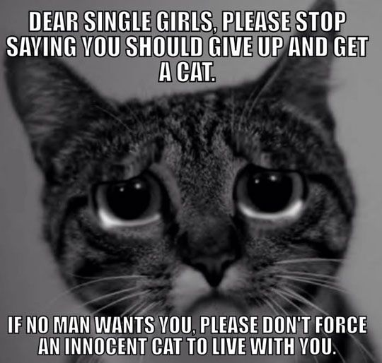 To all the single ladies...