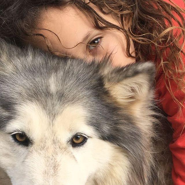 Jason Momoa Wolves: 434 Best Zoe,Lola & Lil' BIG MAN Images On Pinterest