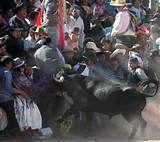 124 – (1536 - 25 de Diciembre) Se celebra la Navidad con una verbena y corrida de toros en la Plaza de Armas. Francisco Pizarro y varios de sus compañeros protagonizan una corrida de toros. Tiene un accidente, uno de los toreros, el asturiano Juan de Cepeda fue cogido mortalmente por uno de los toros, era el paje de Juan de Rivera, el viejo, primer alcalde de Lima.