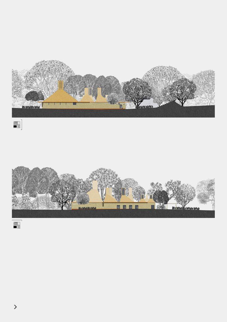 KaruraForest by Jonathan Woolf