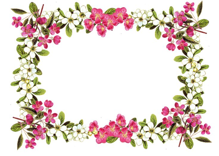 Free Printable Clip Art Borders | free digital flower frame png and flower frame journaling card ...
