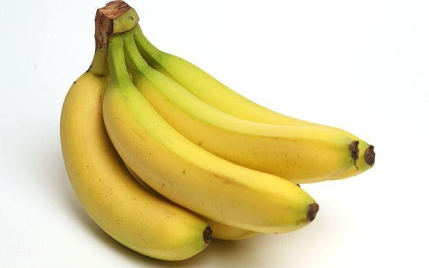 The Cavendish banana