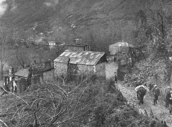 Civil War/Greece  Thick brushes covering much of Kastonia.Location:Louzesti, Greece  Date taken:December 1947  Photographer:John Phillips