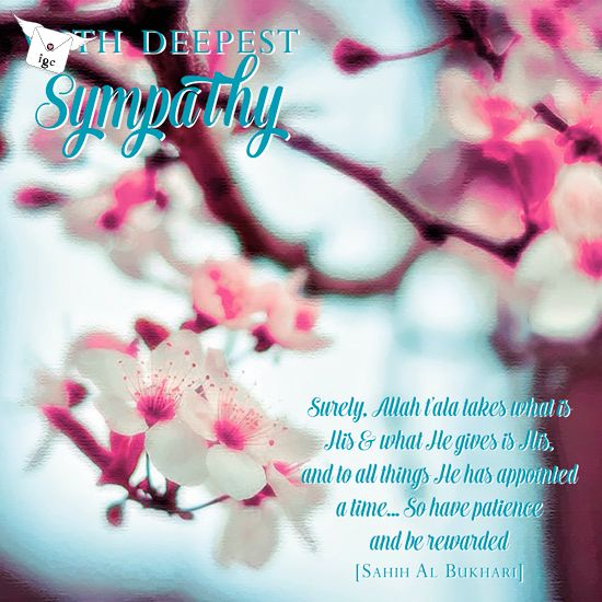 1705SMP With Deepest Sympathy | Quotes | Condolence messages