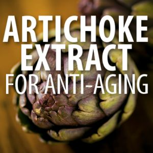 Artichoke Extract, The Anti-Aging Superstar | 1. Reduces LDL (Pill-take 325 grams per day for no more than 23 months at a time) 2. Protects Liver (Tincture-6 ml x 3/dy) 3. Digestive Health (Tea x 1/day) | The Dr Oz Show | Recapo re: Dr Oz