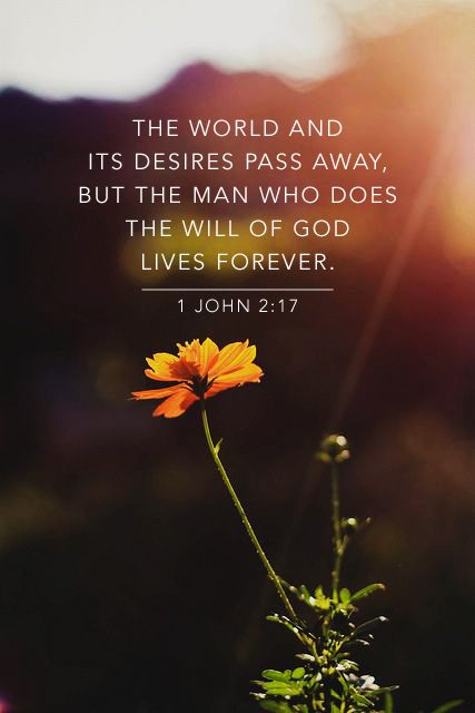 """""""The world and its desires pass away, but the man who does the will of God lasts forever"""" (1 John 2:17). #quotes #eternity #bibleverse"""