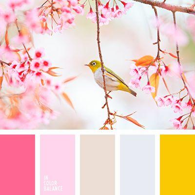 amarillo, amarillo y carmesí, amarillo y gris, amarillo y rosado, beige y rosado, color beige grisáceo, combinación de colores para primavera precoz, frambuesa y amarillo, gris y amarillo, paleta primaveral, rosa pastel, rosado, rosado fuerte, rosado pálido, tonos rosado y beige, tonos