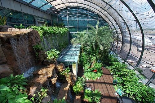 Singapore Changi airport was voted the second best in the world recently. They have six sensory-rich nature trails to experience within their terminals.