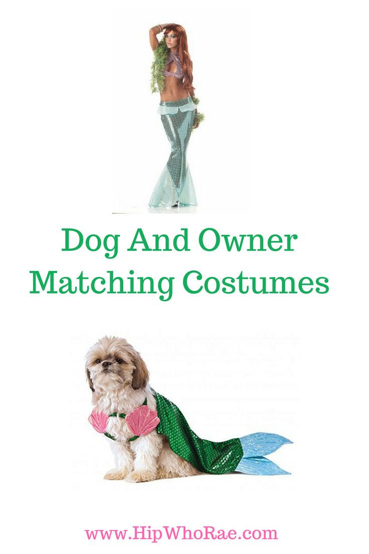 Little mermaid costumes for your little dog, how cute.